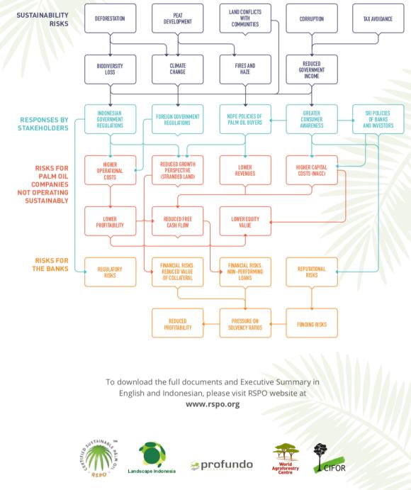 Palm Oil Risks